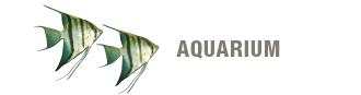 blok-aquarium-330x87.png