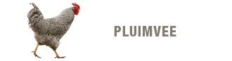 blok-pluimvee-330x87.png