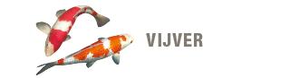 blok-vijver-330x87.png