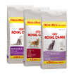 Royal Canin kat bonus bags