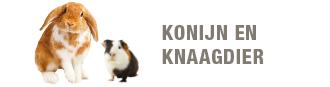 blok-konijn-knaagdier-330x87.png