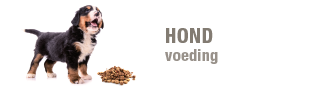 blok-hond-voeding-330x87.png