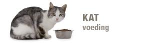 blok-kat-voeding-330x87.png