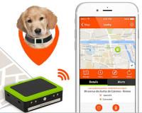 Weenect GPS Tracker voor de hond thumb