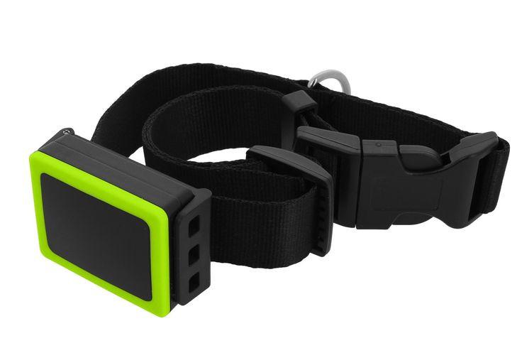 Weenect GPS Tracker voor de hond