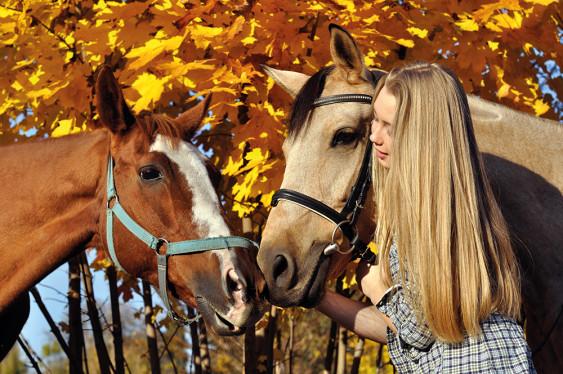 Dolle paardendagen!