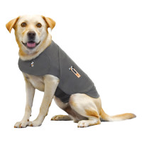 Thundershirt thumb