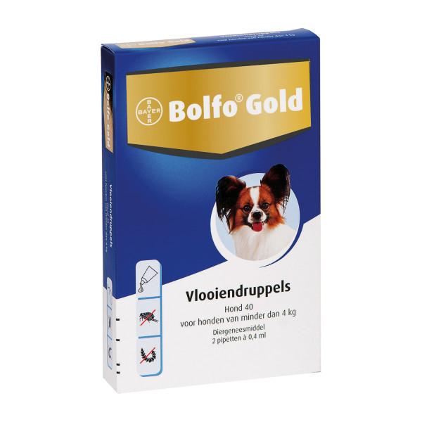 Bolfo Gold 40 hond <br>4 pipetten