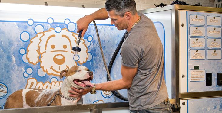 Eenvoudig uw hond wassen