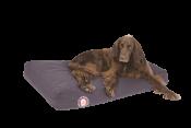 doggy-bagg-siesta.png