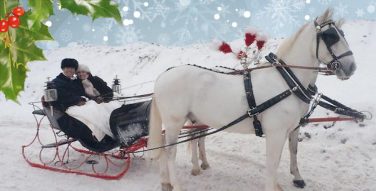 10 december: Kerst in onze winkel!