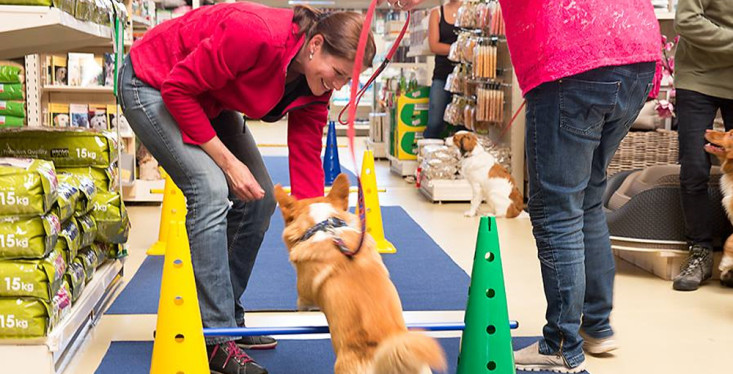 Nieuwe Pets Academy workshops