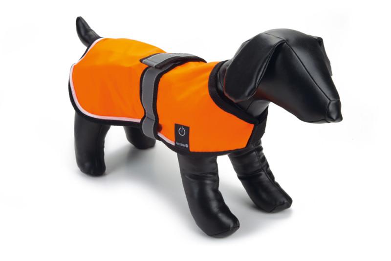 Hondenjas met ledverlichting
