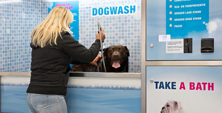 Dogwash in onze winkel