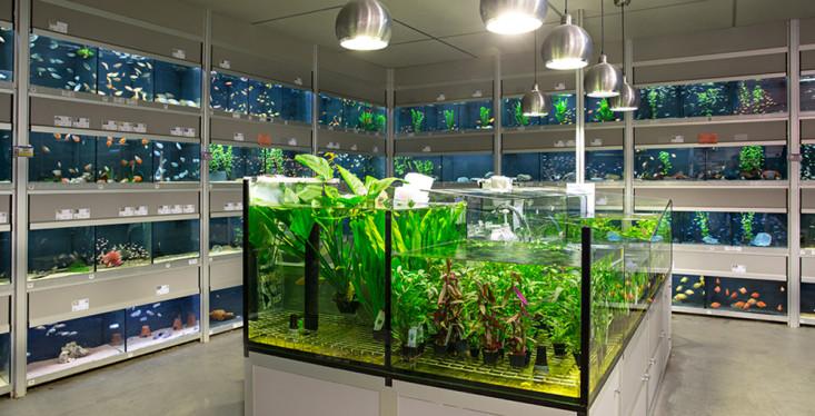 Indrukwekkende aquariumafdeling