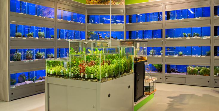 Bezoek onze aquariumafdeling