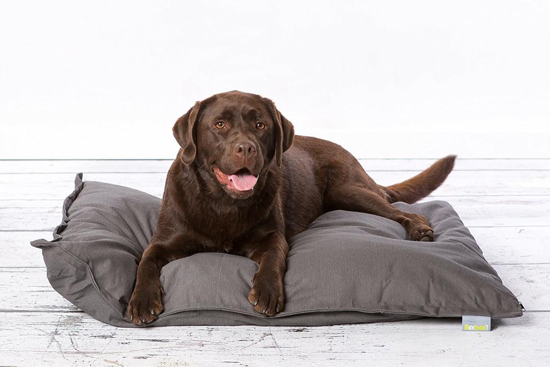 Hondenkussen Rebel Petz Relax grijs