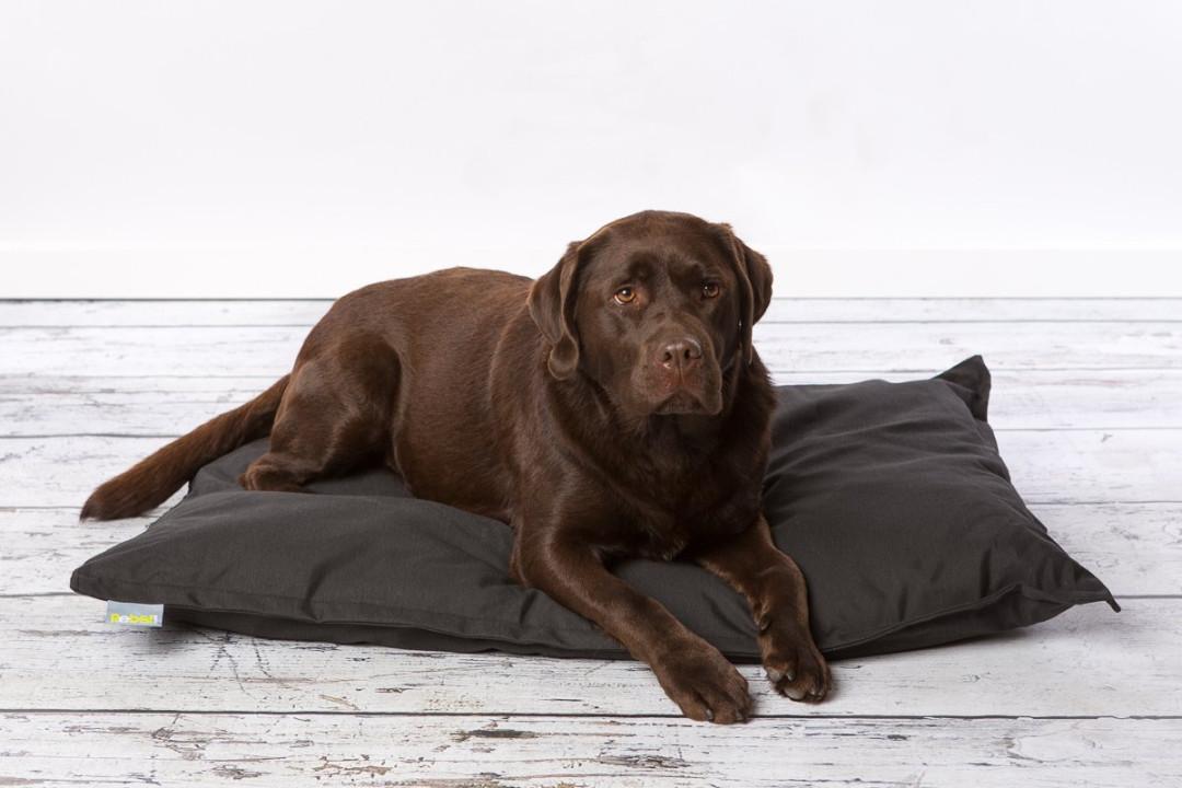 Hondenkussen Rebel Petz Relax zwart