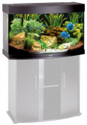 juwel-vision-180-zwart-aquarium.jpg