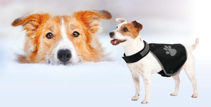 40% korting op hondenkleding!