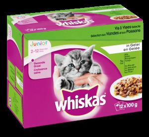 Whiskas kattenvoer Junior Vis en Vlees in Gelei 12 x 100 gr