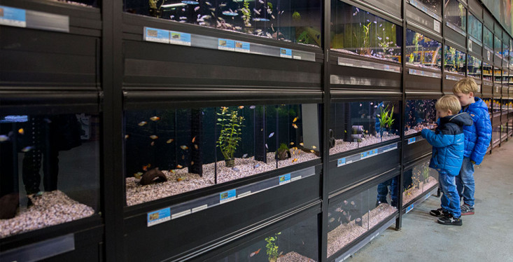 Alles voor de aquariumliefhebber