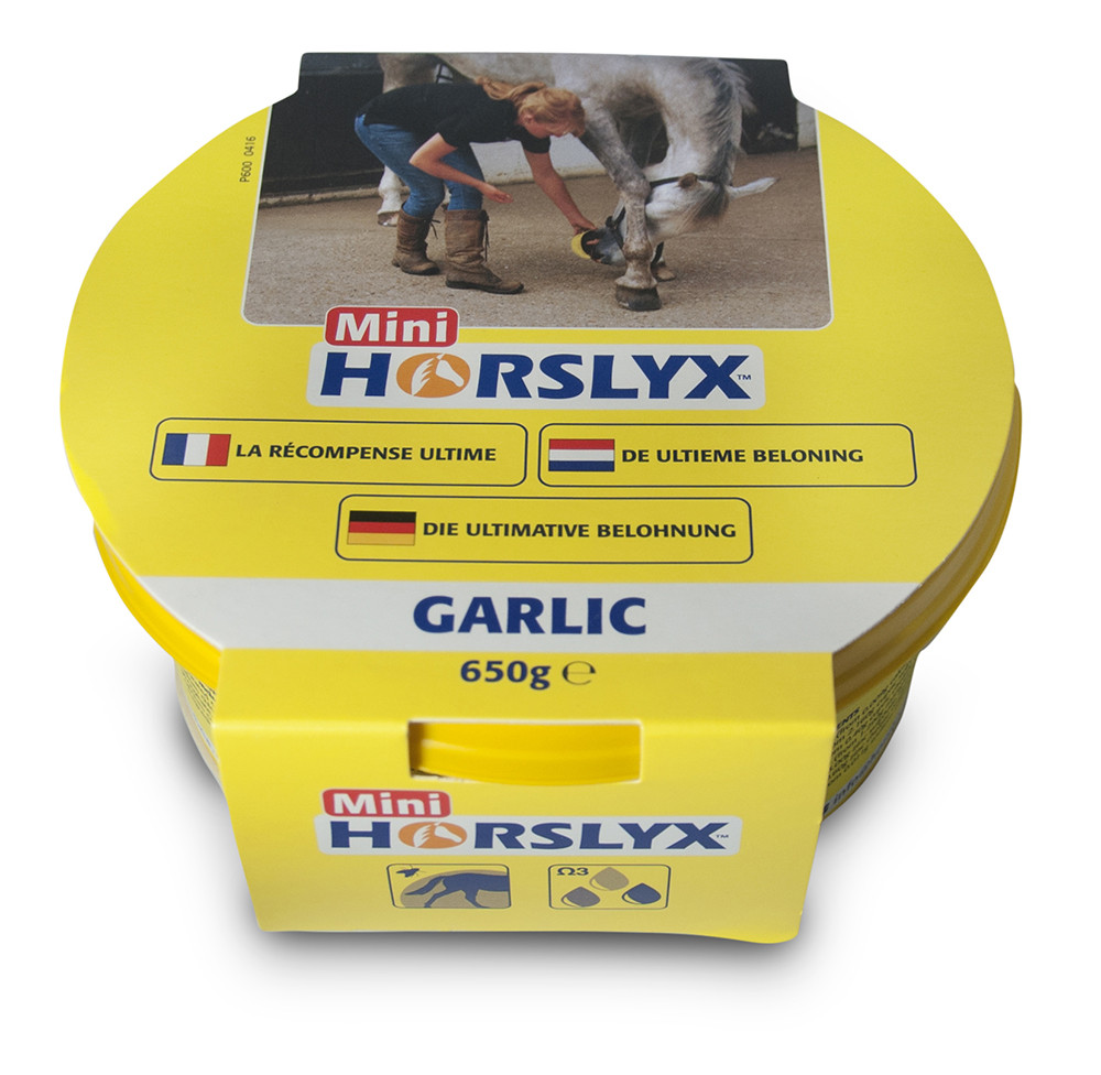 Horslyx Garlic Mini