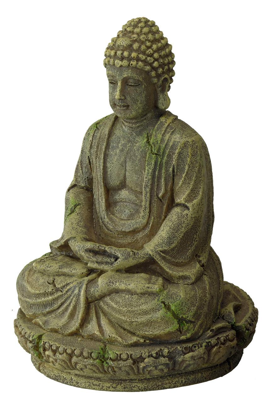 Aqua D'ella Bayon Buddha 2