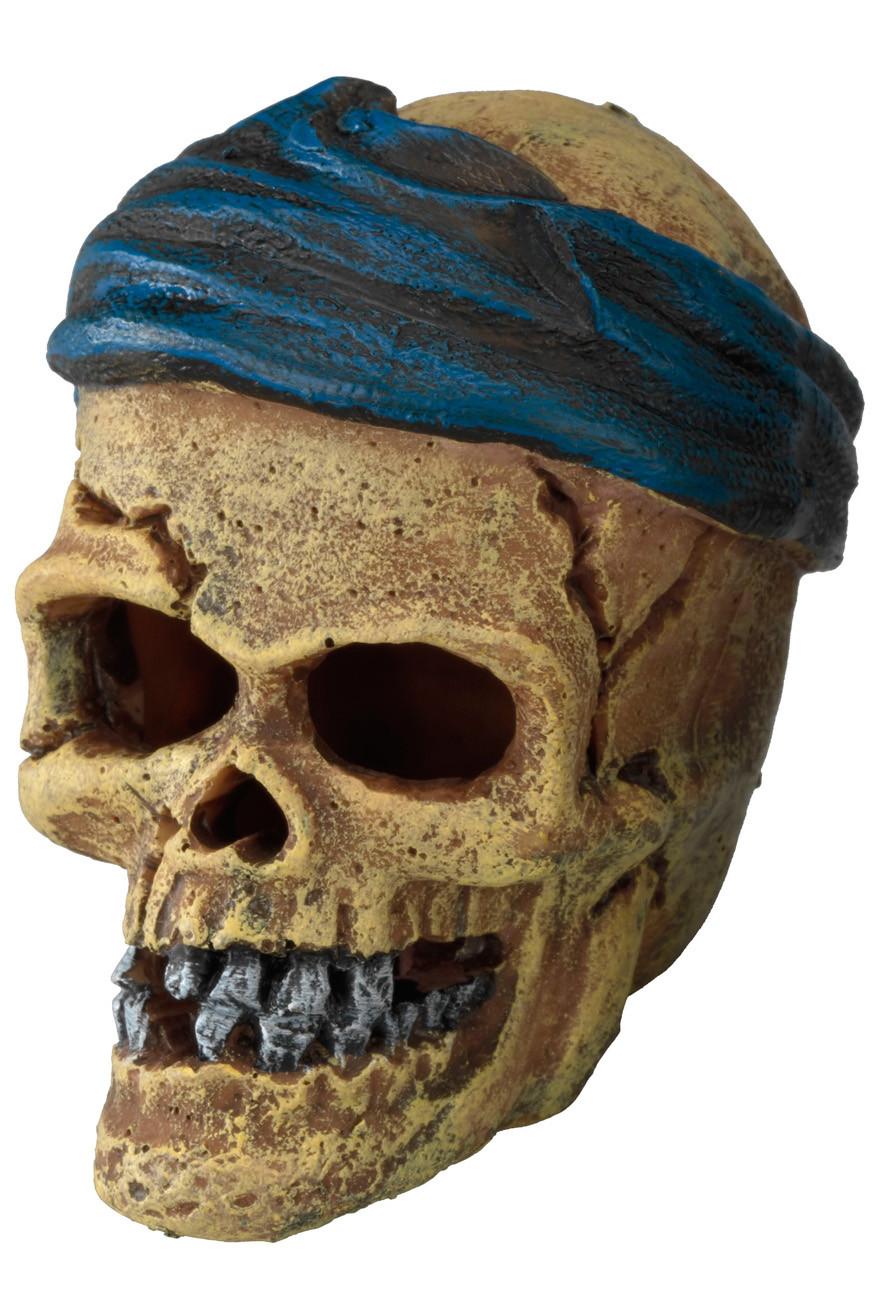 Aqua D'ella pirate skull head-crack