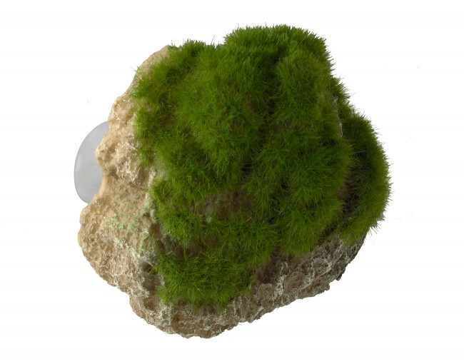 Aqua D'ella moss stone S with suction cup