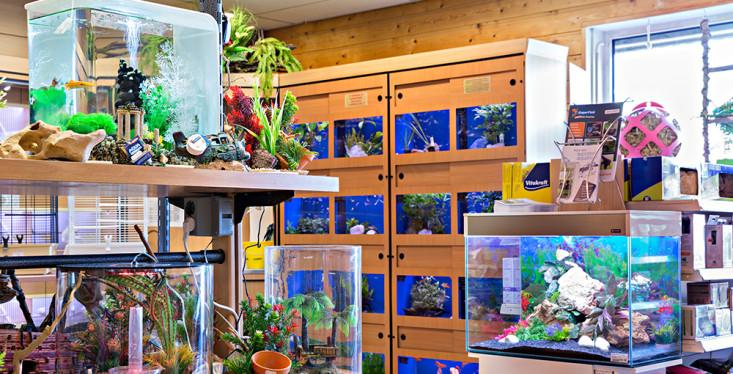 Voor de aquariumliefhebber