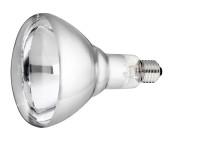 Lamp 250 w/wit Hard Glas Philips thumb