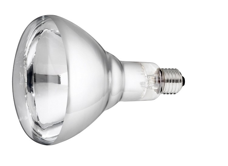 Lamp 250 w/wit Hard Glas Philips