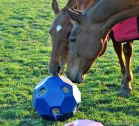 Hooi feeder rood (Hay Play Feeder) thumb