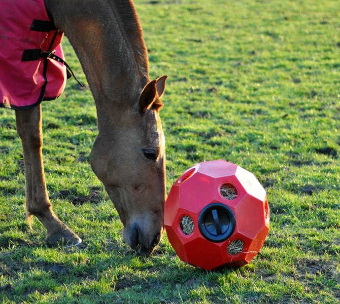 Hooi feeder rood (Hay Play Feeder)