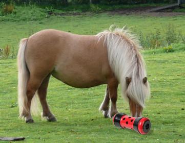 Pipolino voerdispenser Pony < 250 kg rood/zwart