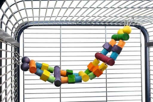 Houten papegaaienladder met gekleurde blokken