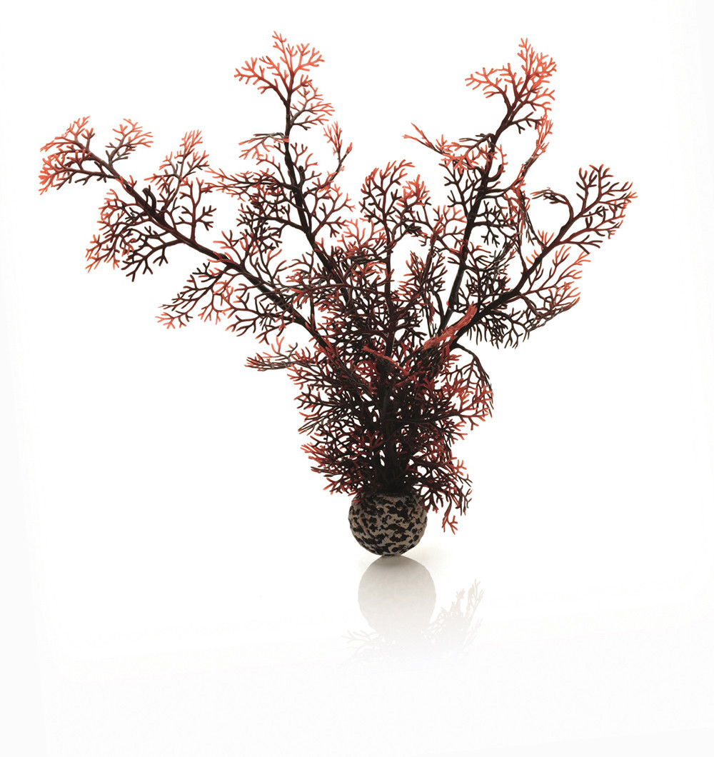 biOrb Sea Fan Medium crimson