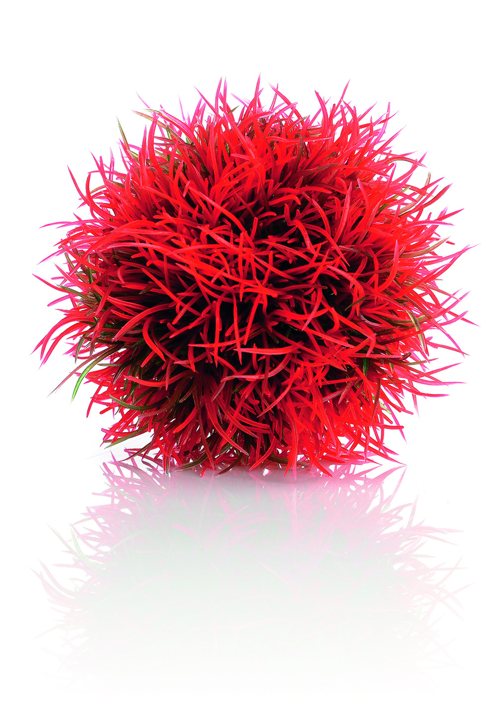 biOrb Color Ball red