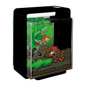 A4051327 - Superfish-Home-25-XL-aquarium-zwart.jpg
