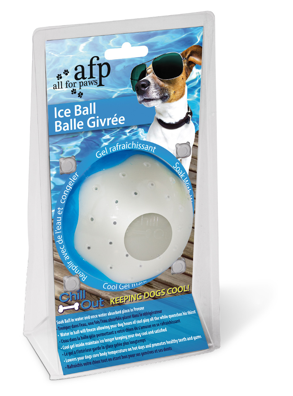 All for Paws Chill Out Ice Ball S