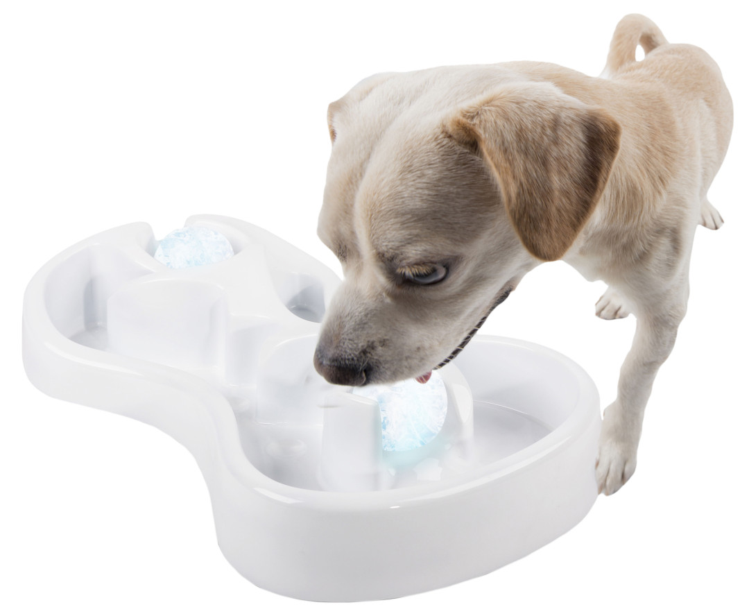 All for Paws Chill Out Ice Track & Thirst Cruncher Ice Balls