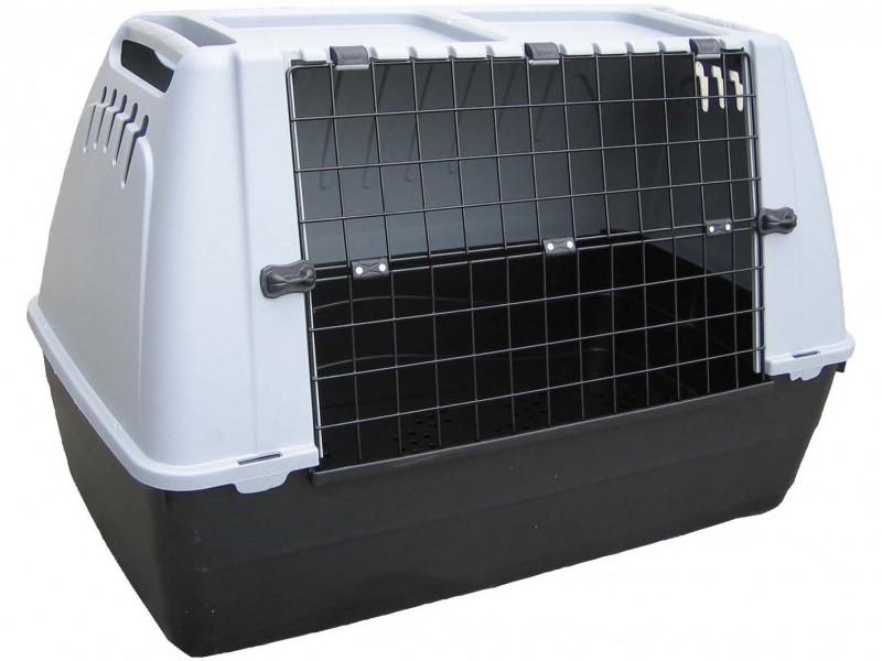 Transportbox Baron 80