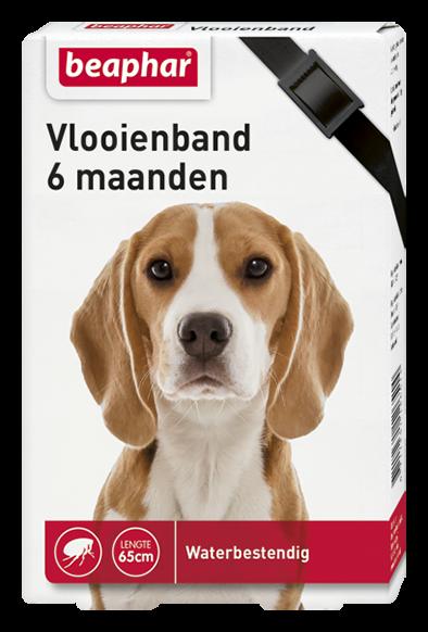 Beaphar Vlooienband hond zwart 1 st