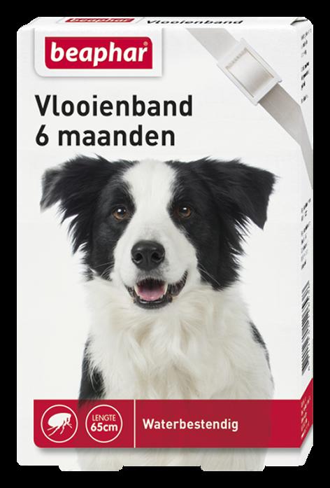 Beaphar Vlooienband hond wit 1 st