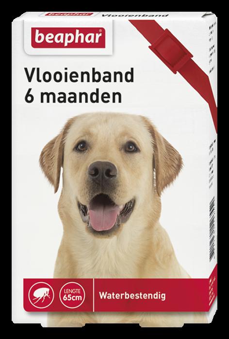 Beaphar Vlooienband hond rood 1 st