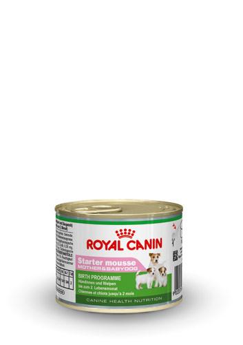 Royal Canin Starter Mousse 195 gr