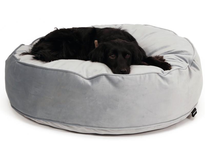 Hondenmand of hondenkussen kopen? eemland diervoeders
