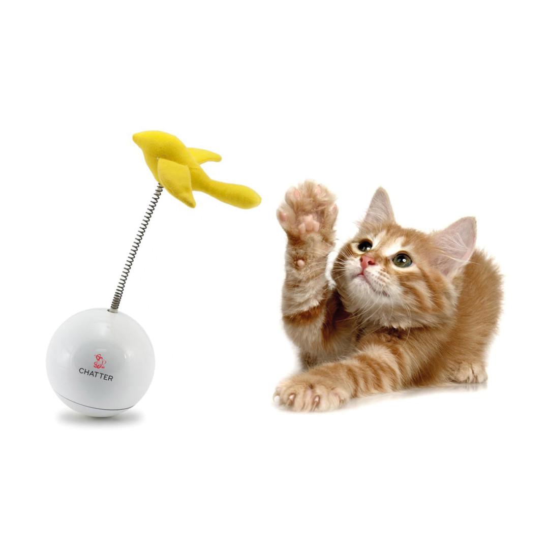 PetSafe FroliCat Chatter
