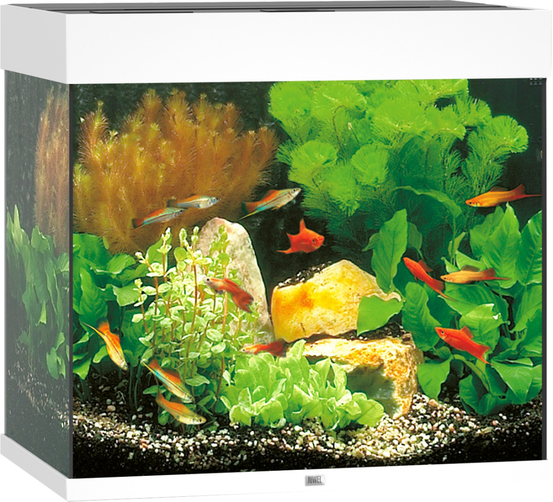 Juwel aquarium Lido 120 LED wit
